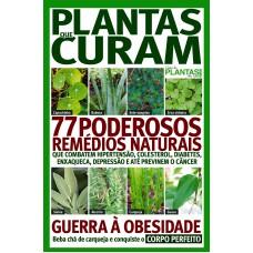 Guia De Plantas Em Casa Extra 03
